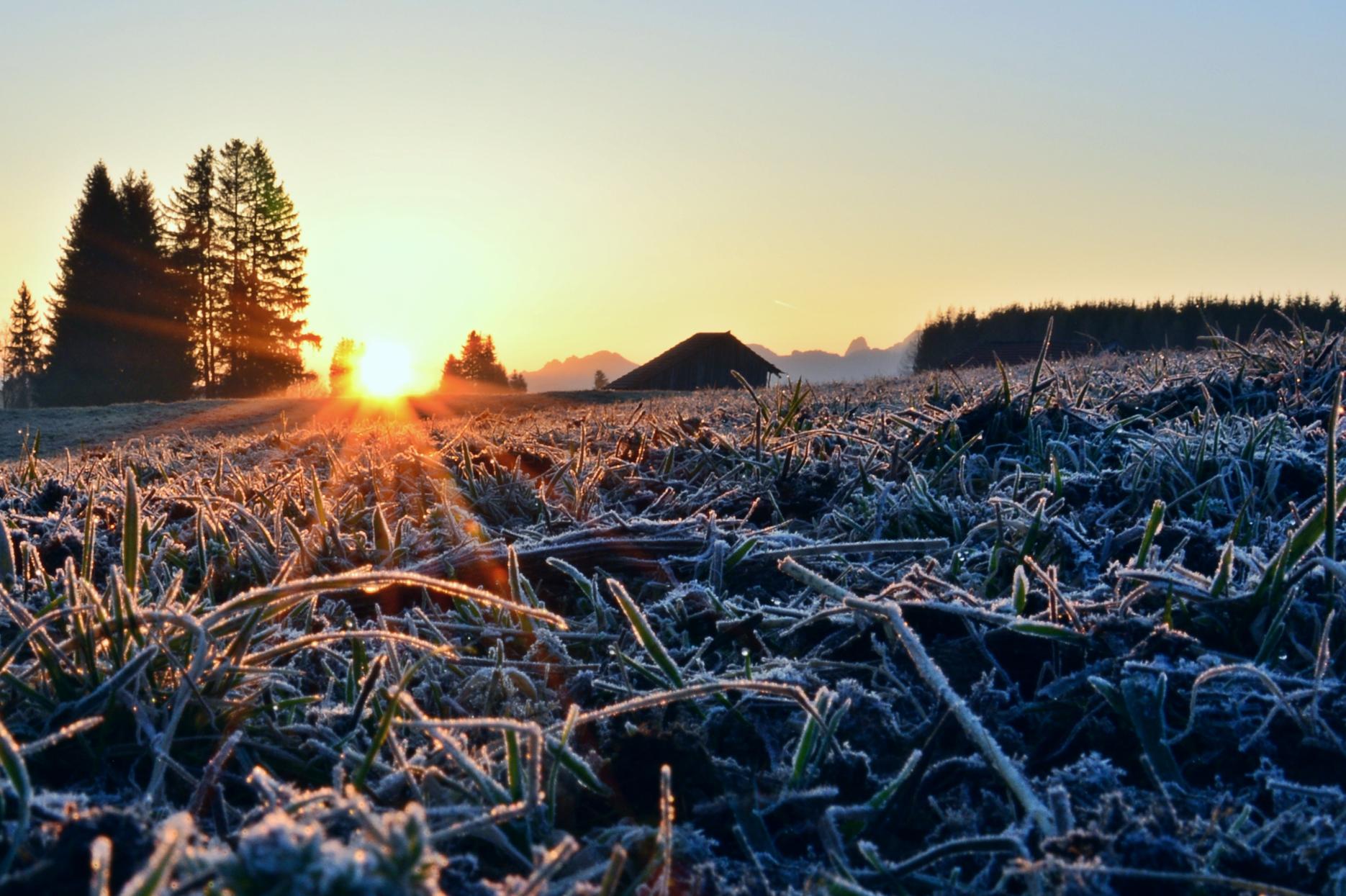 F0102 Frostmorgen am Eglesee Pfronten.jpg