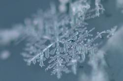W0218 Schneeflocke.jpg