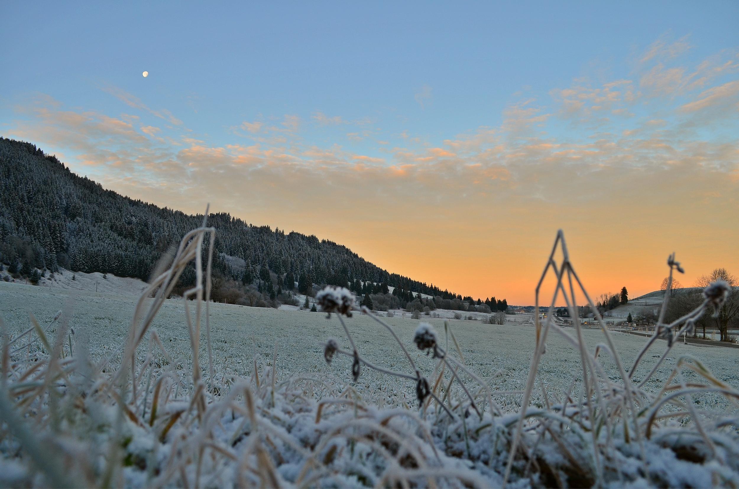 W0047 Frostmorgen Kappel