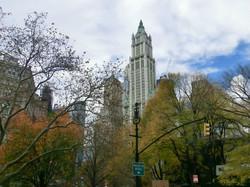 New York 032.JPG
