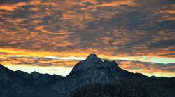 W0163 Morgenglühen überm Säuling.jpg