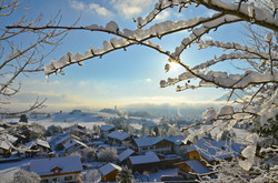 W0133 Schneemorgen Osterwochenende.jpg