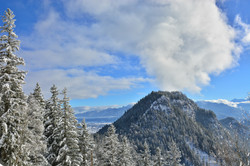 W0275 Winterlandschaft vom Falkenstein.jpg