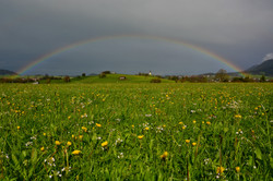 F0118_Regenbogen_überm_Pfrontner_Tal.jpg