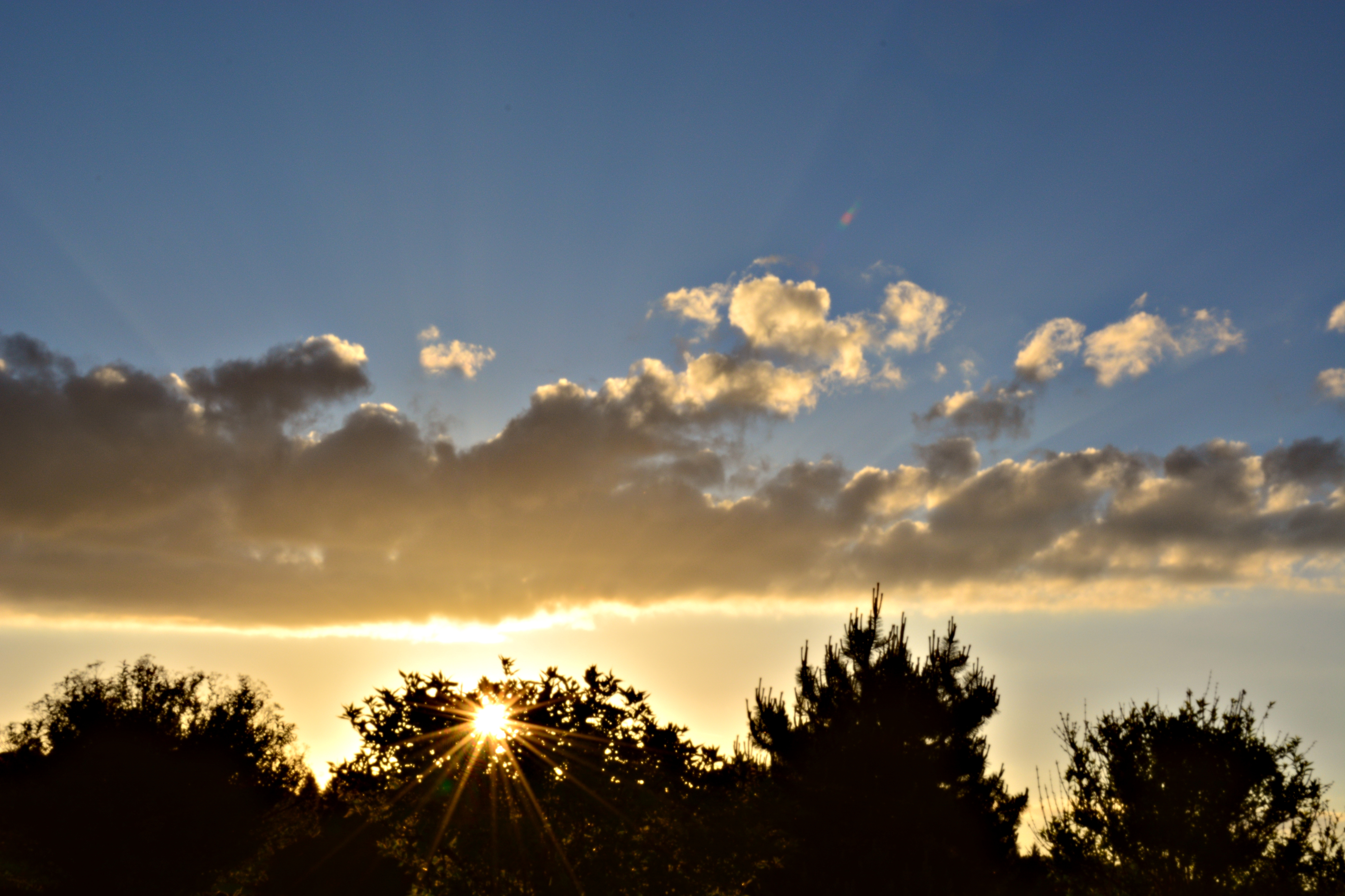 S0099 Abendsonne.jpg