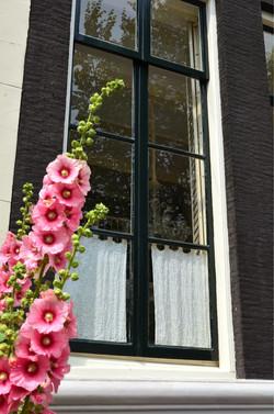 Amsterdam (20).jpg