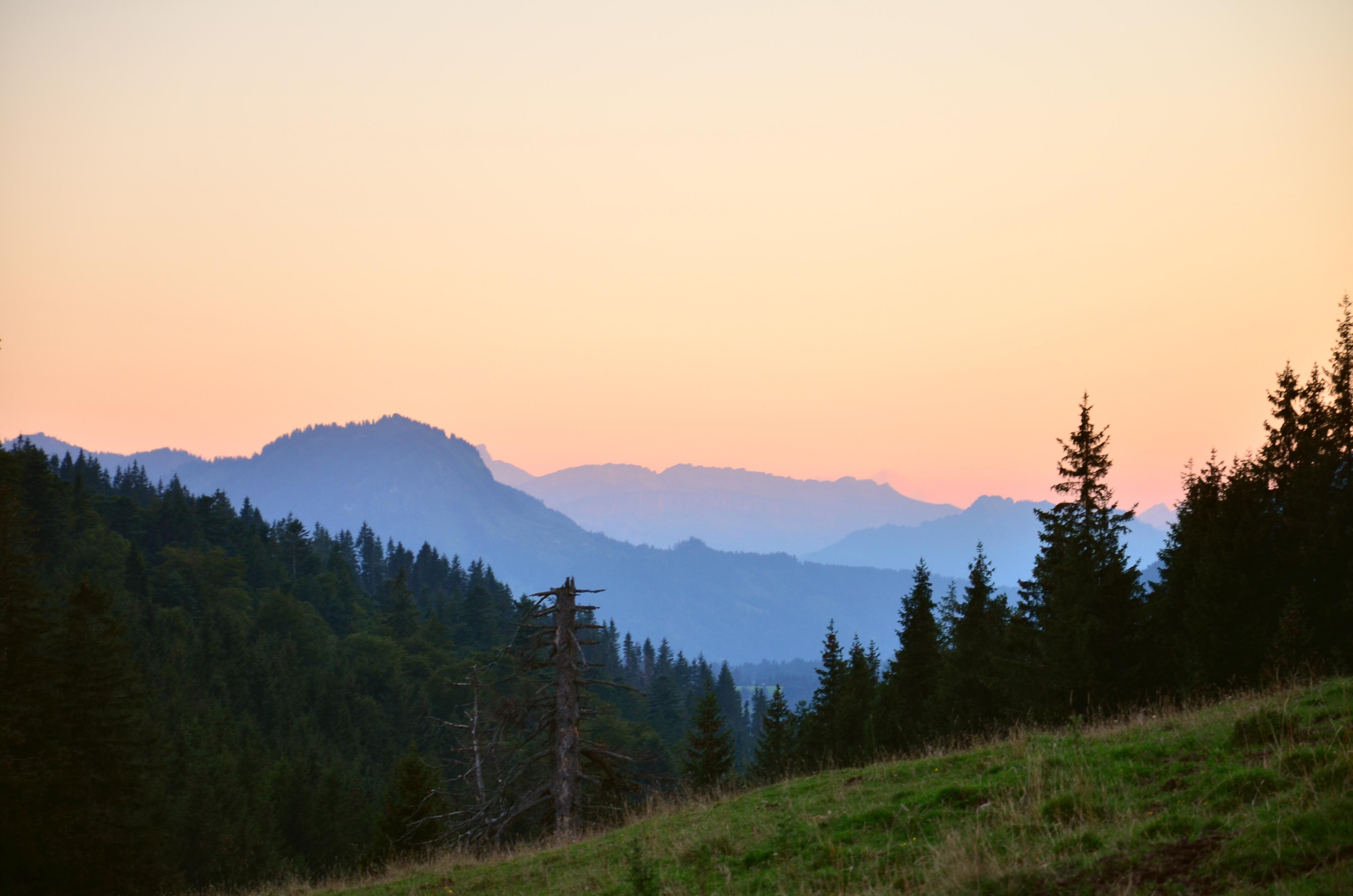 A0067_Abendrot_auf_der_Alpe_Bärenmoos_Pfronten.jpg