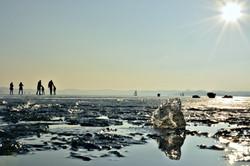 G0339 Wörthsee Eisfläche.jpg