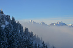 A0136 Aus dem Nebel am Tegelberg
