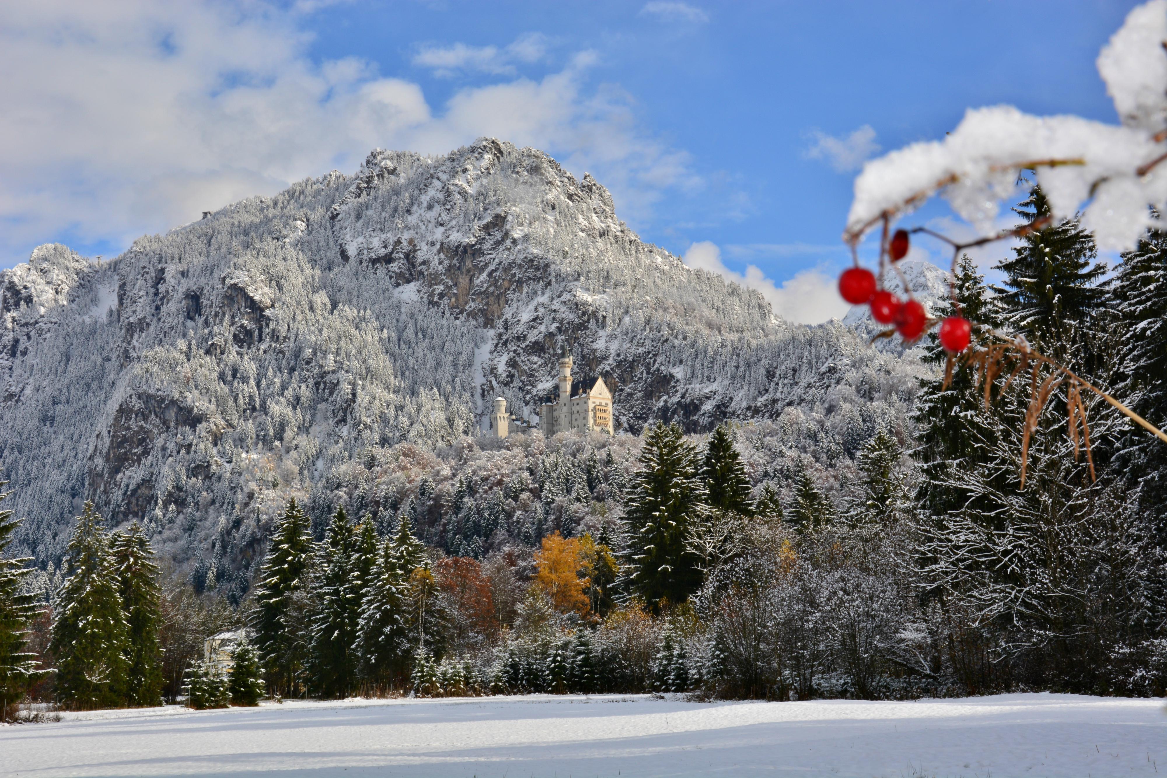 B0105 Winterzauber am Schloss Neuschwanstein.jpg