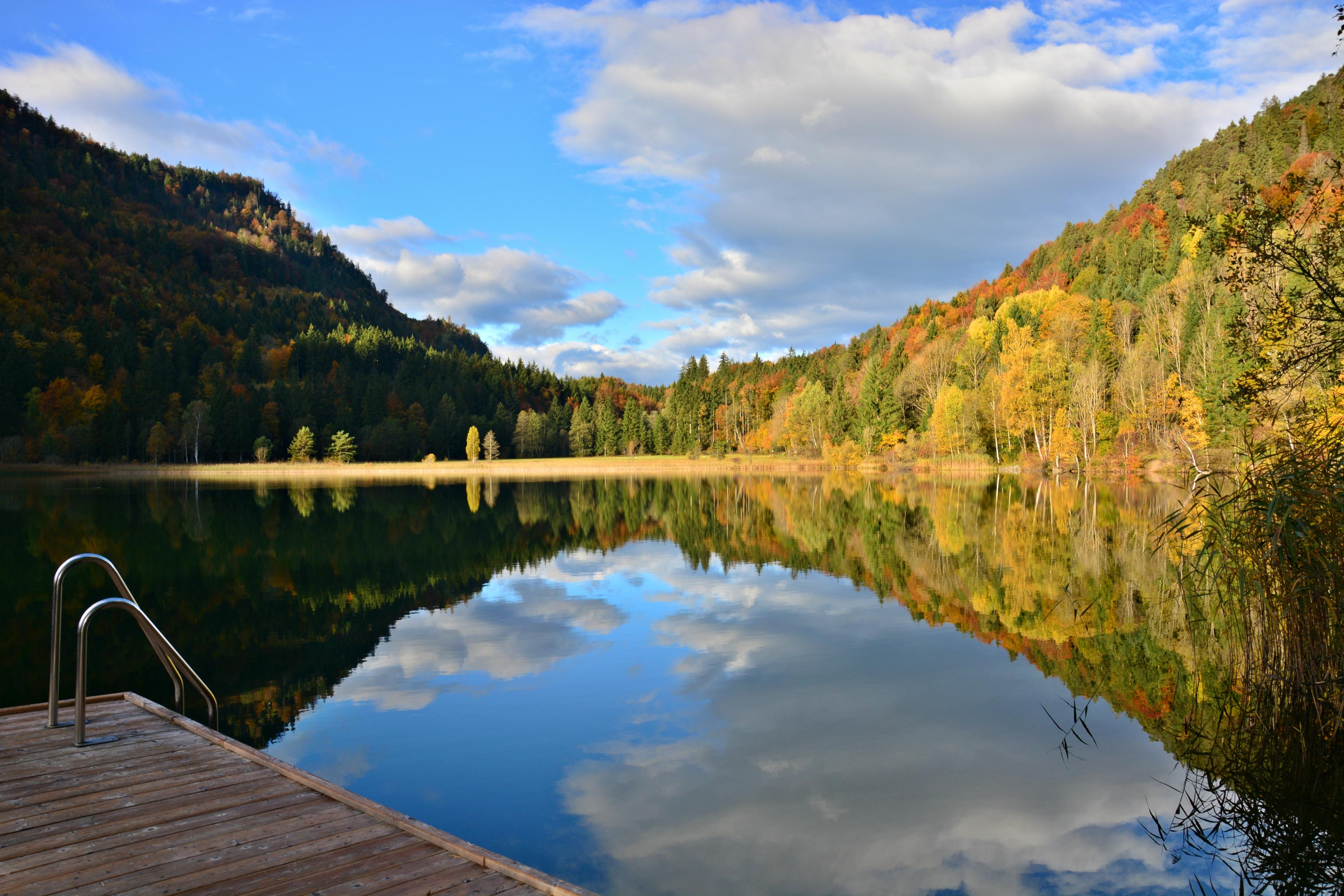 G0320 Herbststimmung am Steg Schwansee.jpg