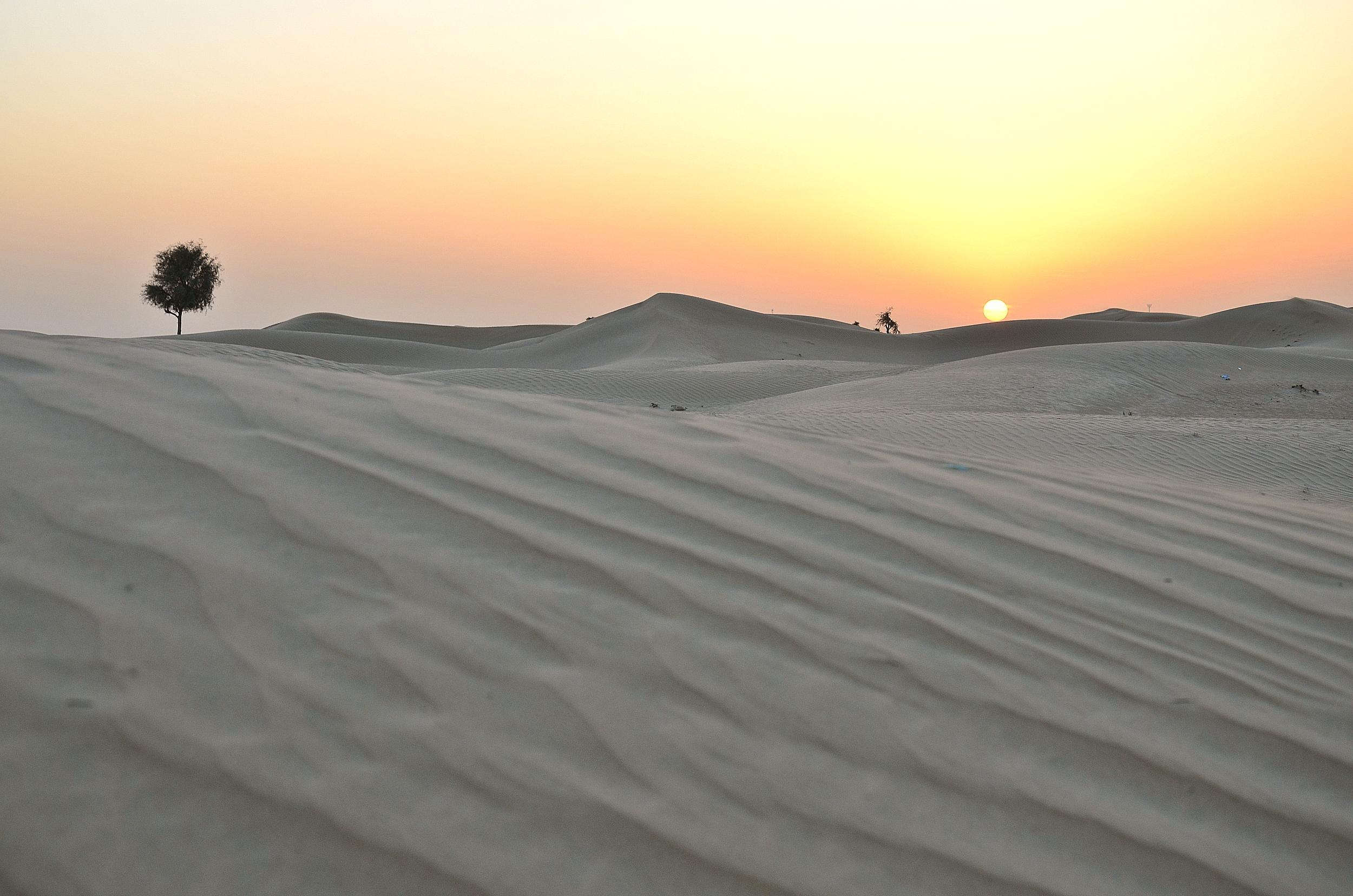 Dubai (80).jpg