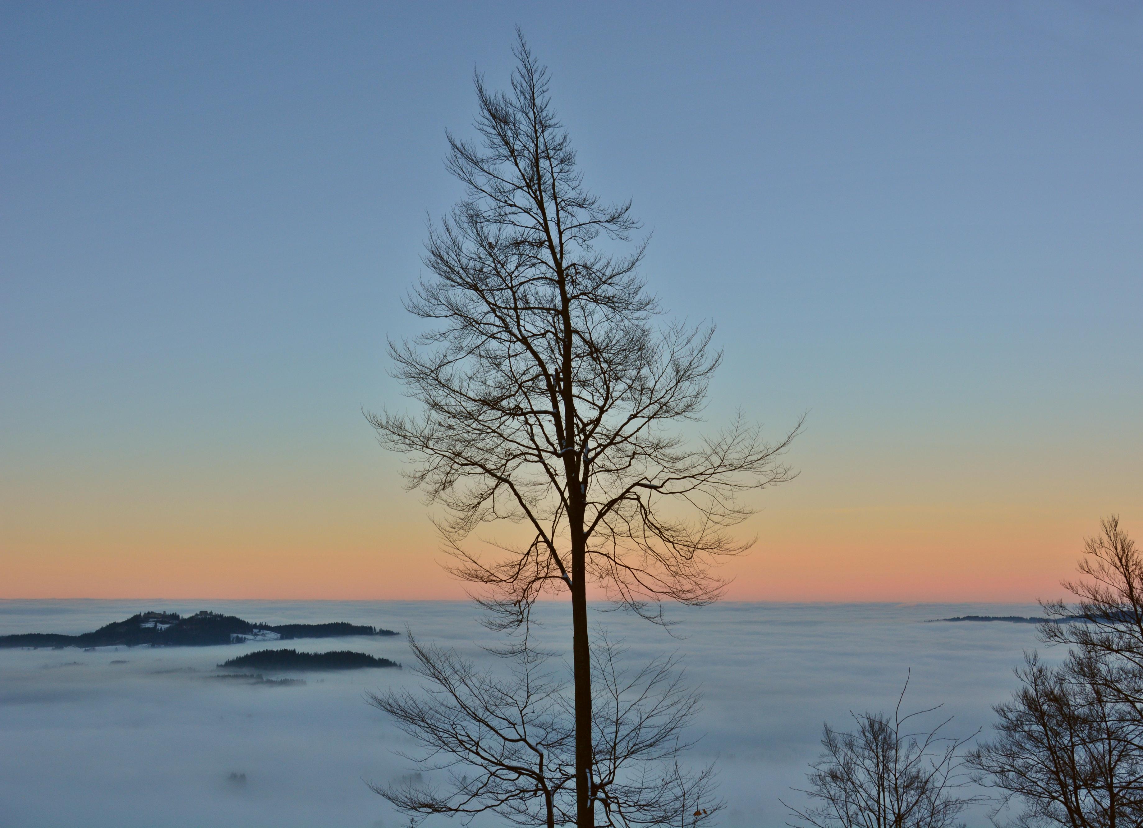 W0306_Abenddämmerung_überm_Wolkenmeer_Frey-_und_Eisenberg.jpg