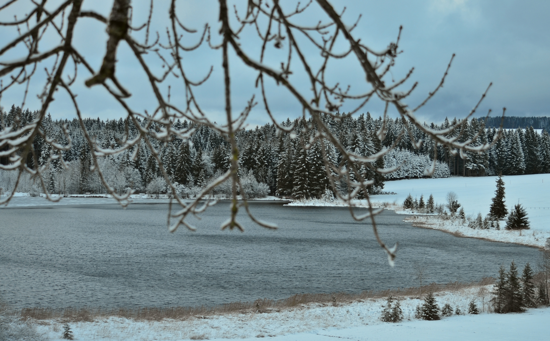 G0109 Kögelweiher Wintersturm
