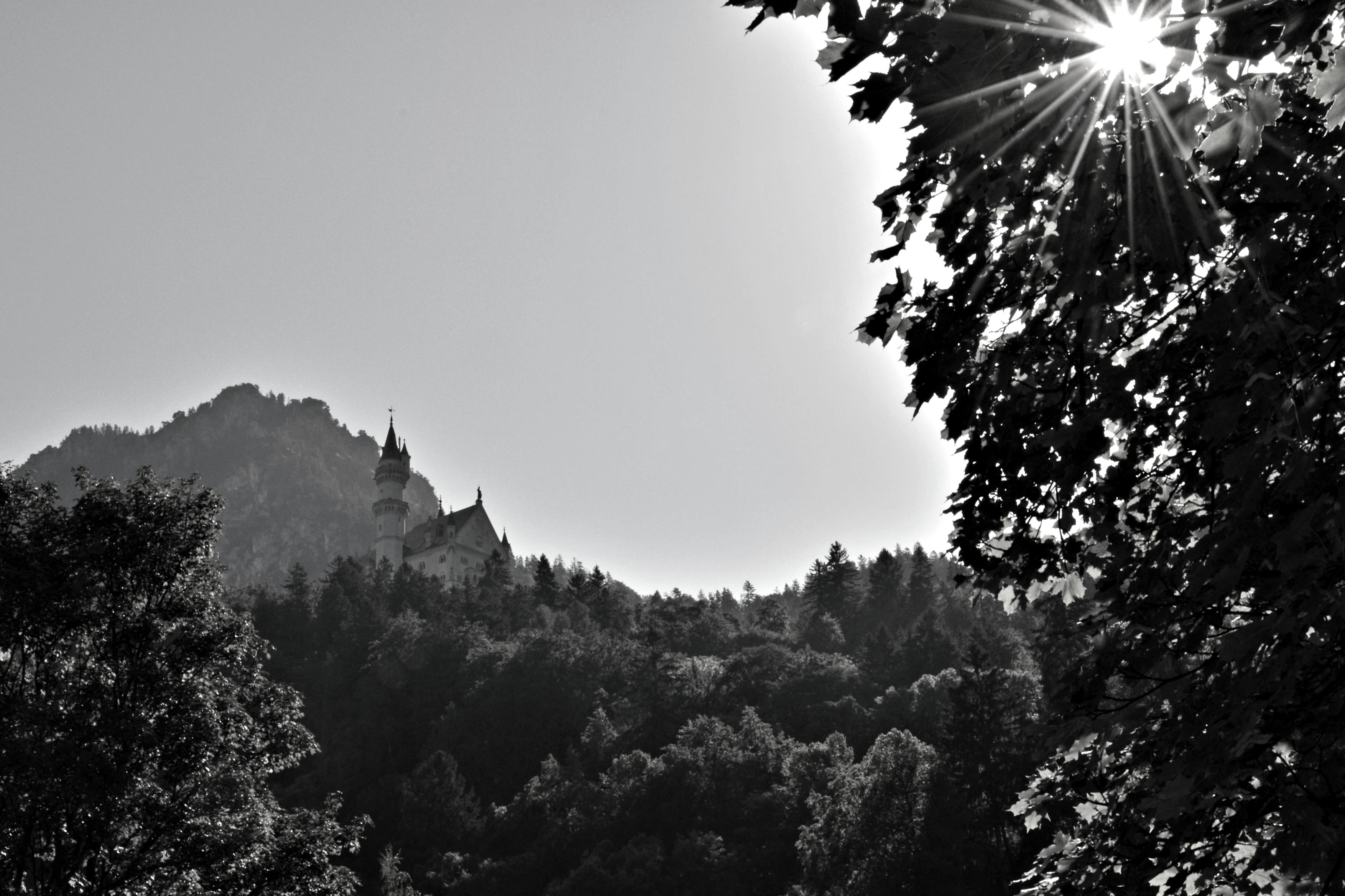 B0102 Schloss Neuschwanstein SW mit Sonne.jpg