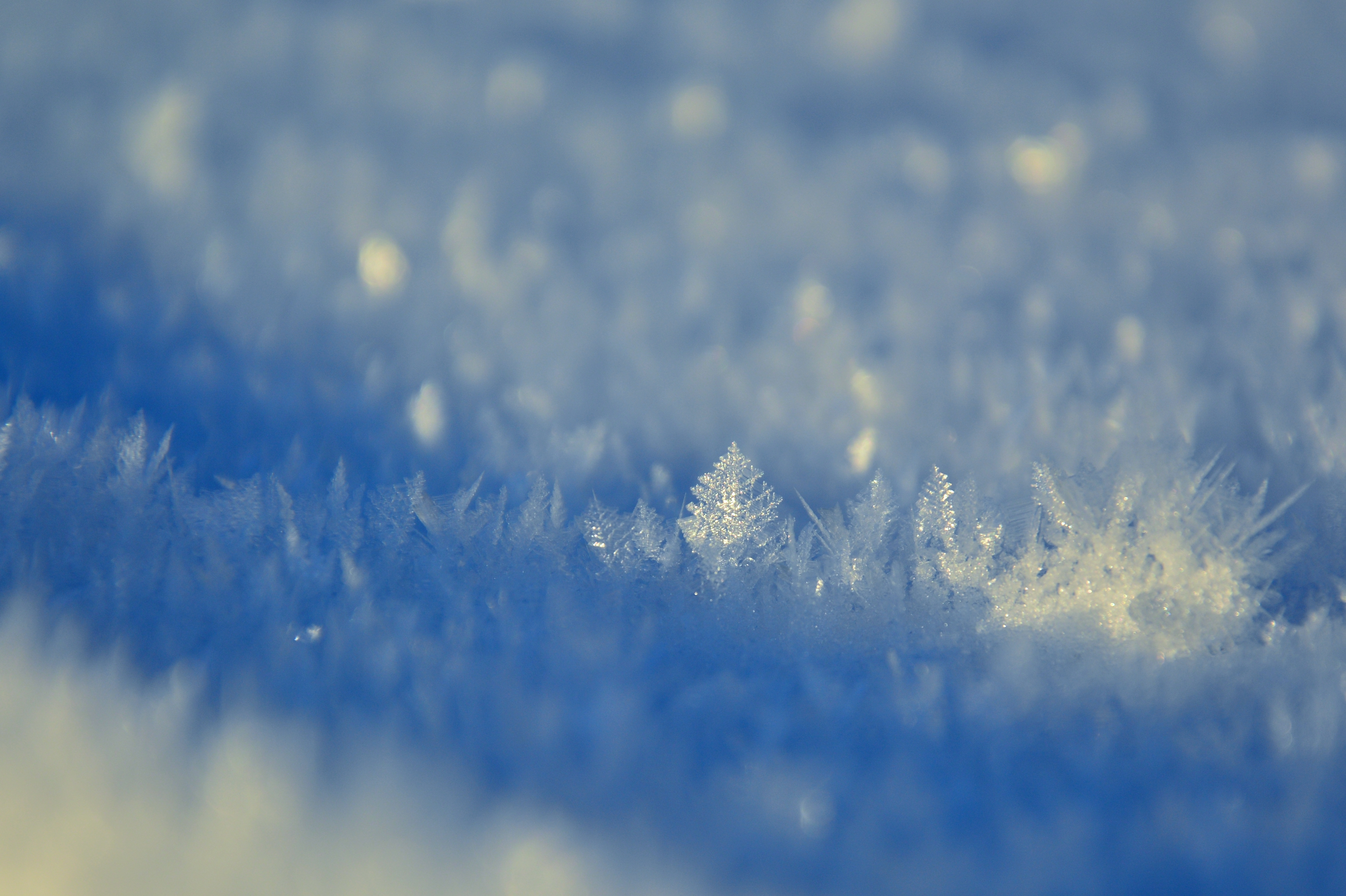 W0293 Schneekristalle.jpg