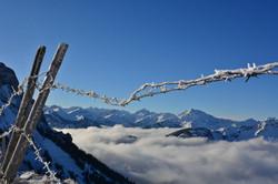 W0353_Stacheldraht_über_den_Wolken_Breitenberg.jpg