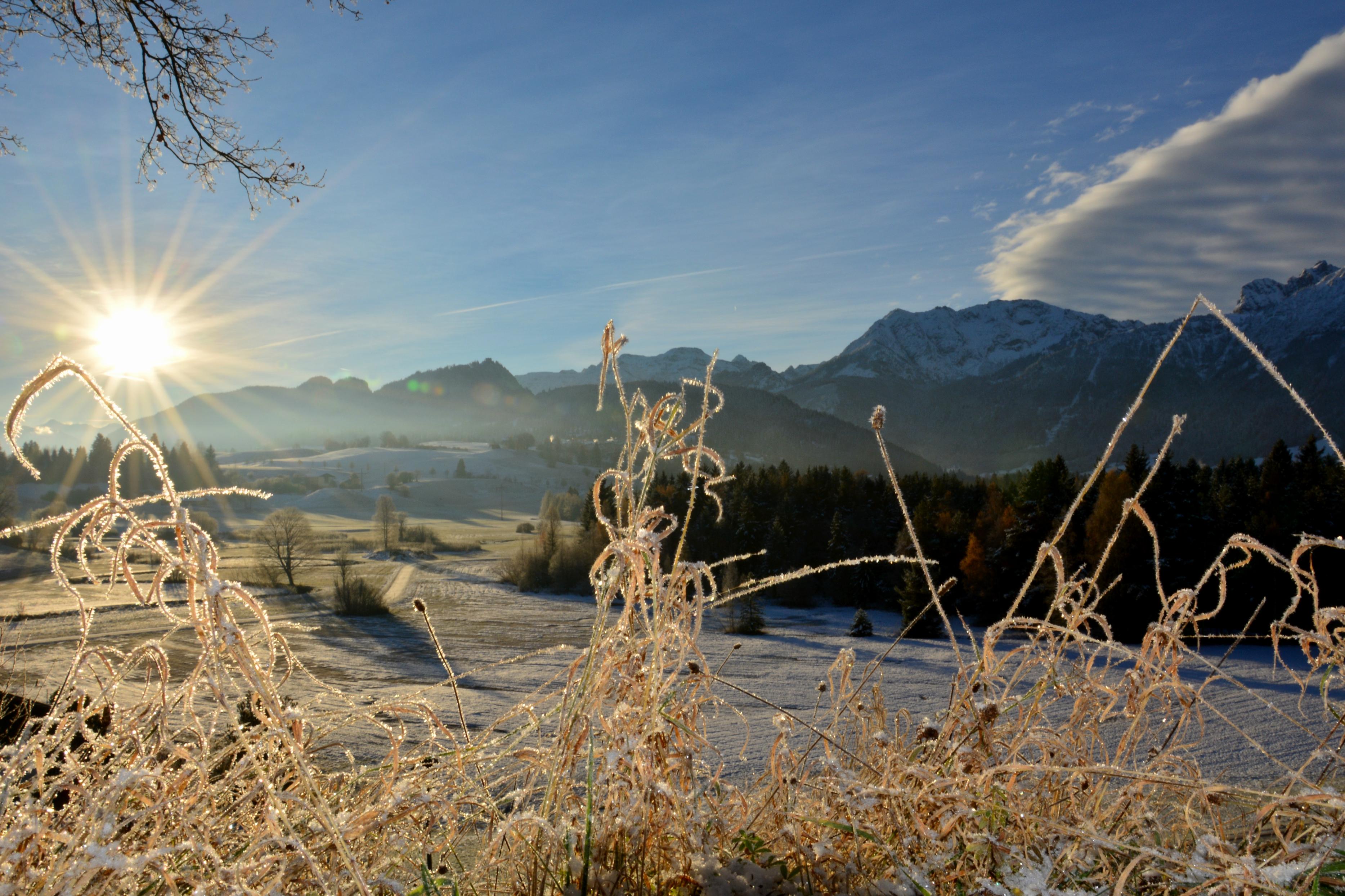 W0241 Frostmorgen auf der Geigerhalde Pfronten.jpg