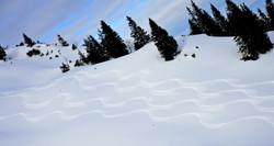 W0201 Spuren im Schnee Breitenberg
