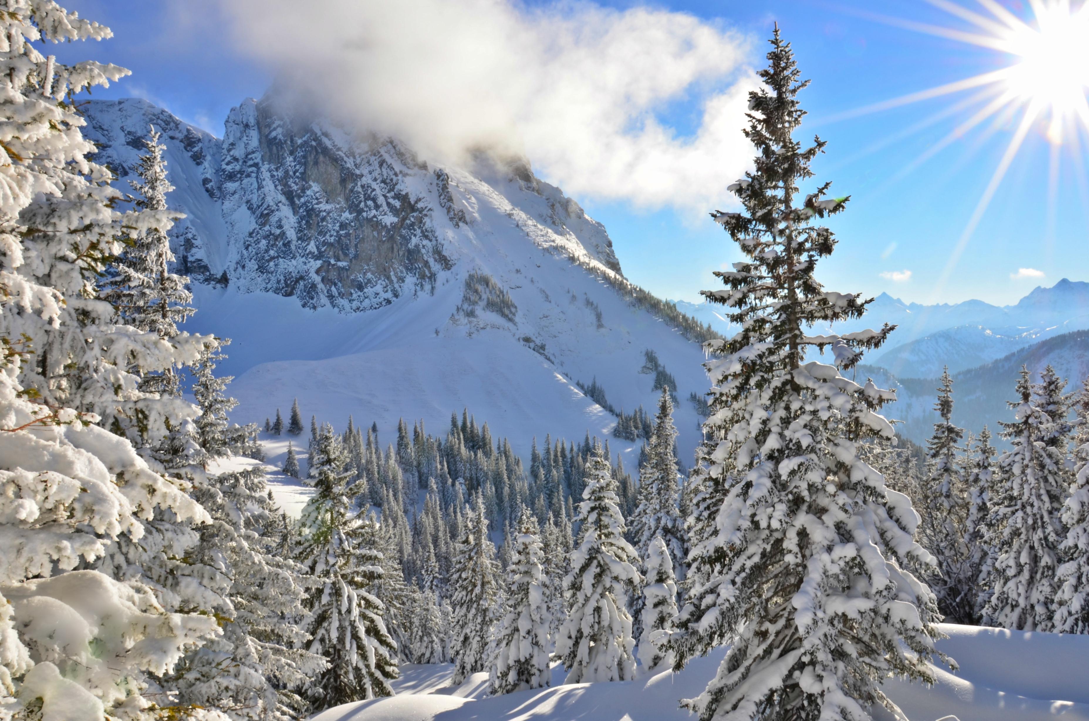 W0178 Winterlandschaft auf dem Breitenberg Blick auf Aggenstein.jpg