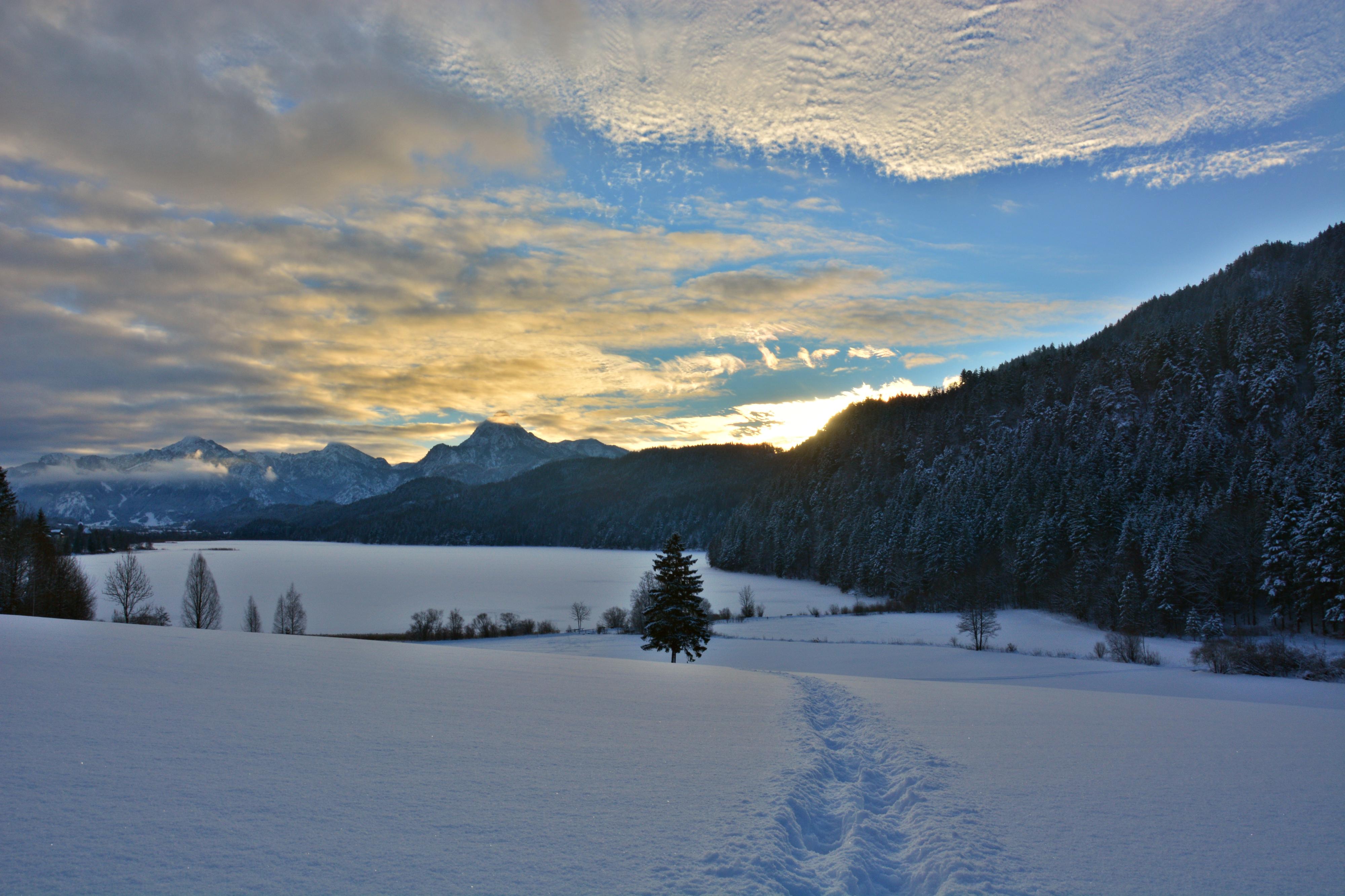 W0269 Spuren im Schnee am Weissensee.jpg