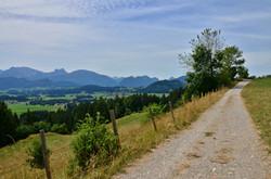 A0079 Alpe Beichelstein Weg mit Blick nach Pfronten.jpg