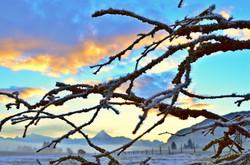 W0019 Eiszweige  über Weissensee