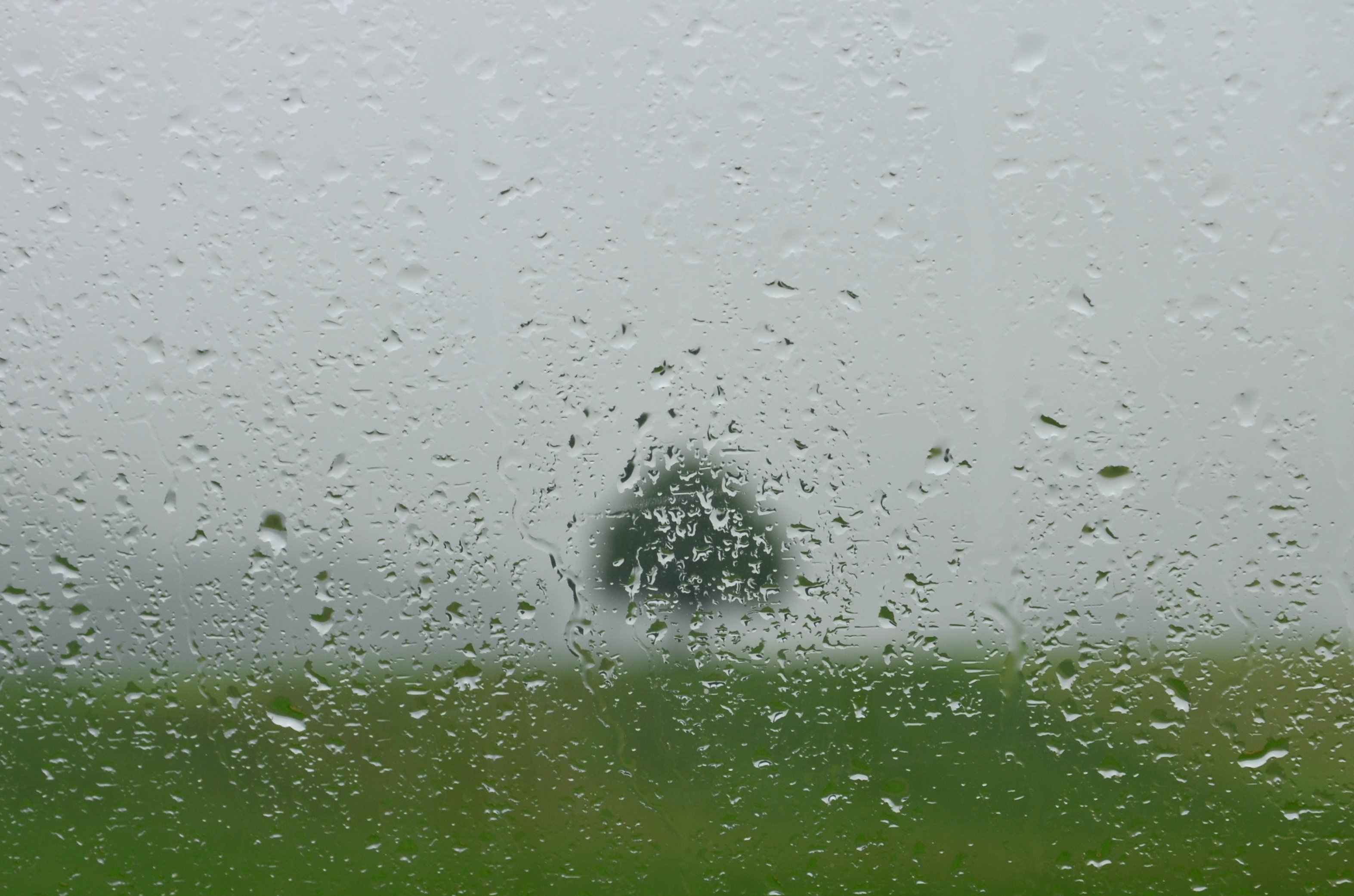 F0057 Regentag Wassertropfen an der Scheibe.jpg