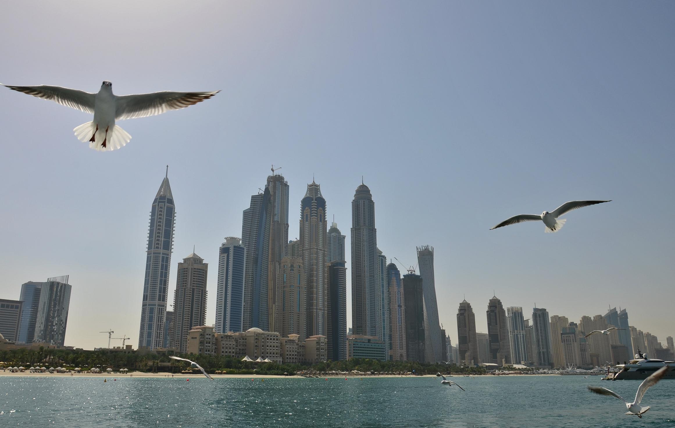 Dubai (102).jpg