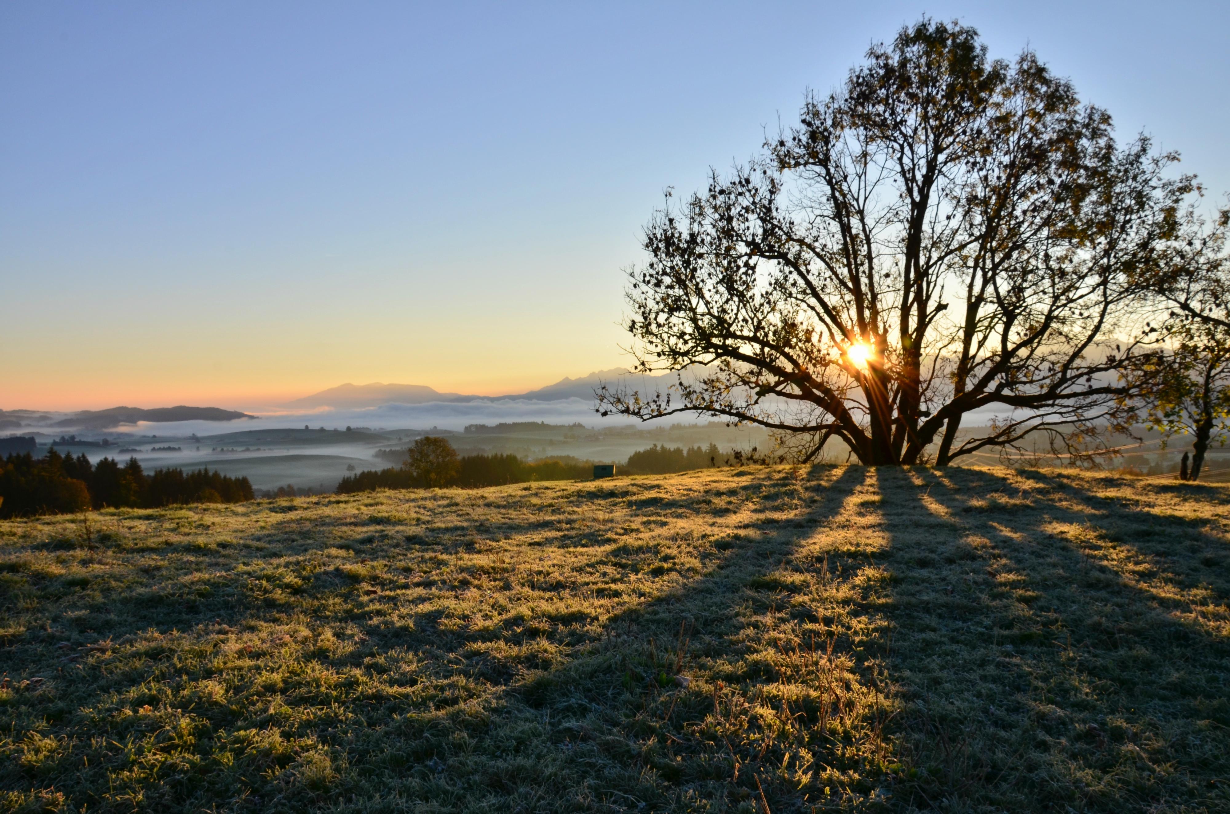 H0116 Morgensonne Oberdeusch.jpg