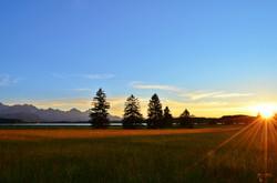H0003 Herbstsonne am Bannwaldsee