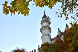 B0120 Herbst am Schloss.jpg