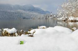 G0286_Weissensee_im_Winterkleid_mit_Glücksklee.jpg