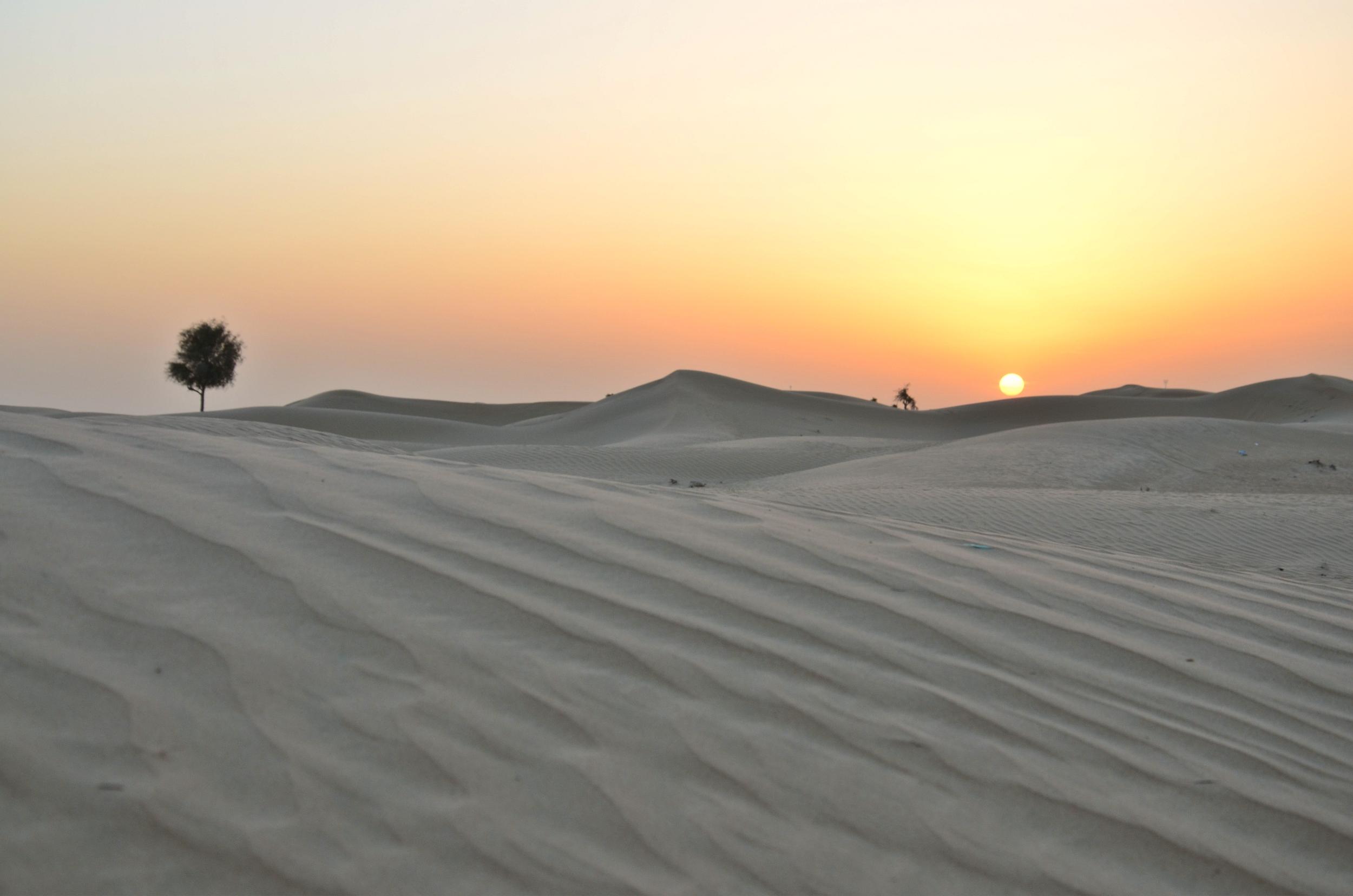 Dubai (88).jpg