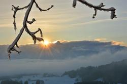 W0359 Wintermorgen auf der Ruine Frey-und Eisenberg.jpg