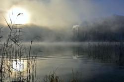 G0341 Frostmorgen am Alatsee.jpg