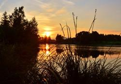 G0040 Sonnenuntergang Schwaltenweiher