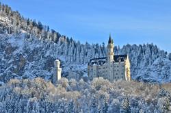 B0039_Frostbäume_am_Schloss.jpg