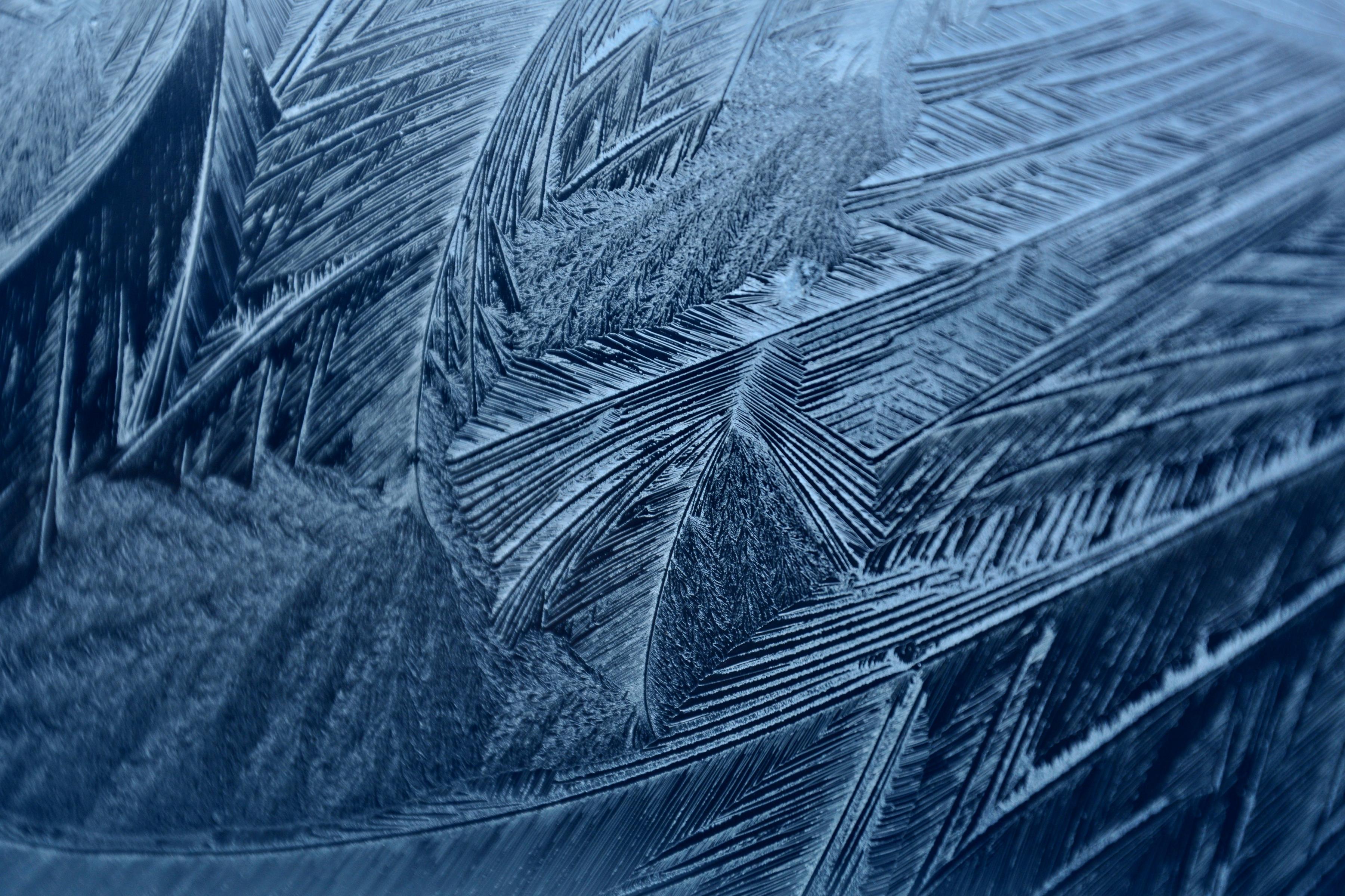 M0112 Frostfedern.jpg