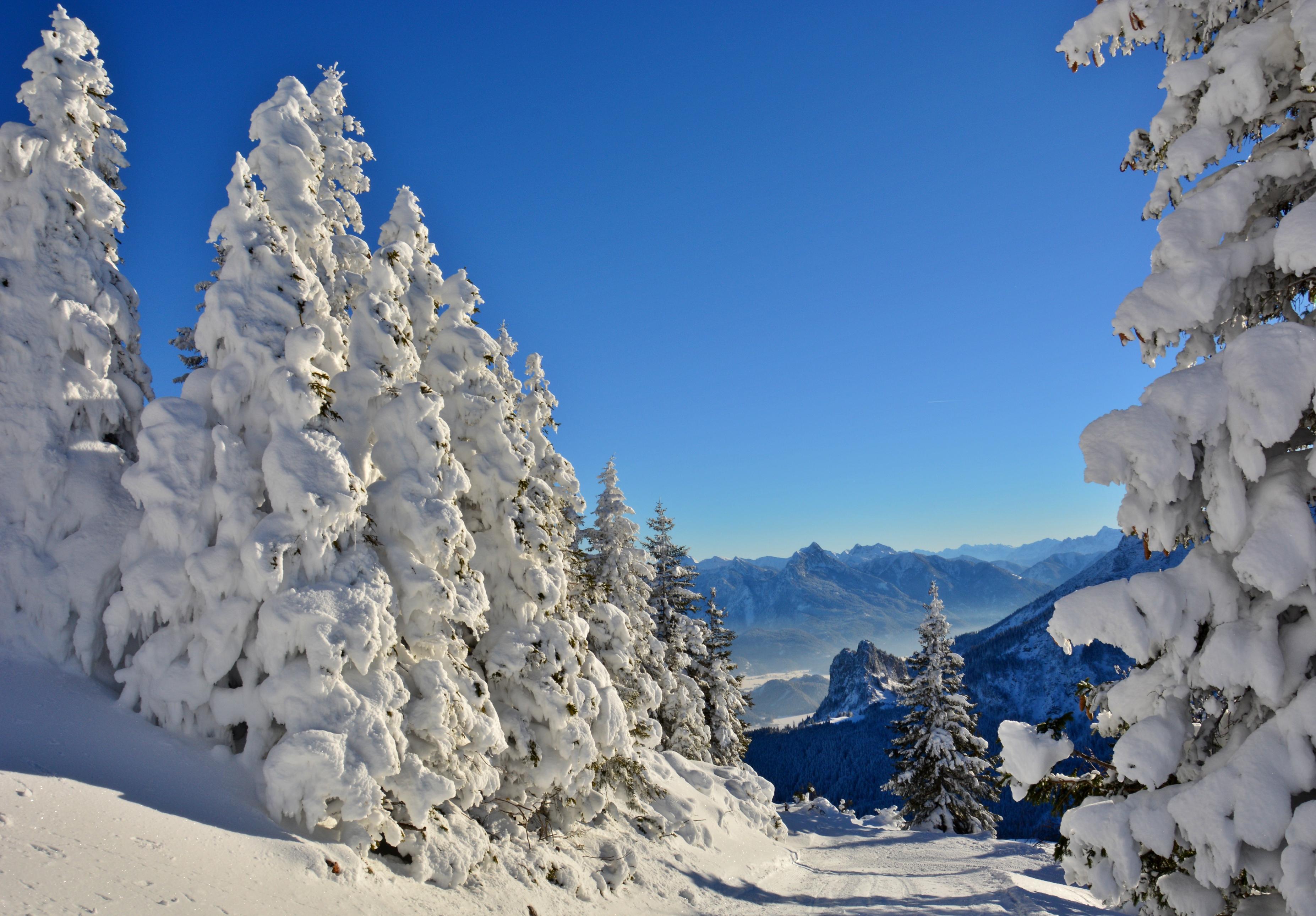 W0302 Wintertraum auf dem Breitenberg.jpg