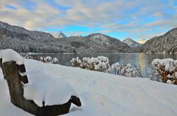 G0120 Wintertag am Alpsee Bank