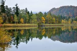 G0222 Schwansee in Herbstfarben.jpg