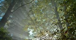H0047 Nebelstrahlen