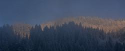 W0315 erste Sonne im Winterwald.jpg
