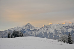 W0225 Winterlandschaft Erkenbollingen Hopfen.jpg