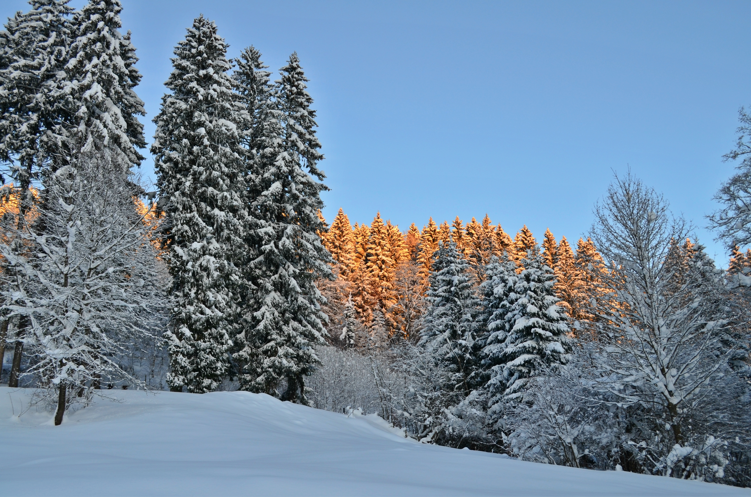 W0053_Winterzauber_in_Röfleuten.jpg