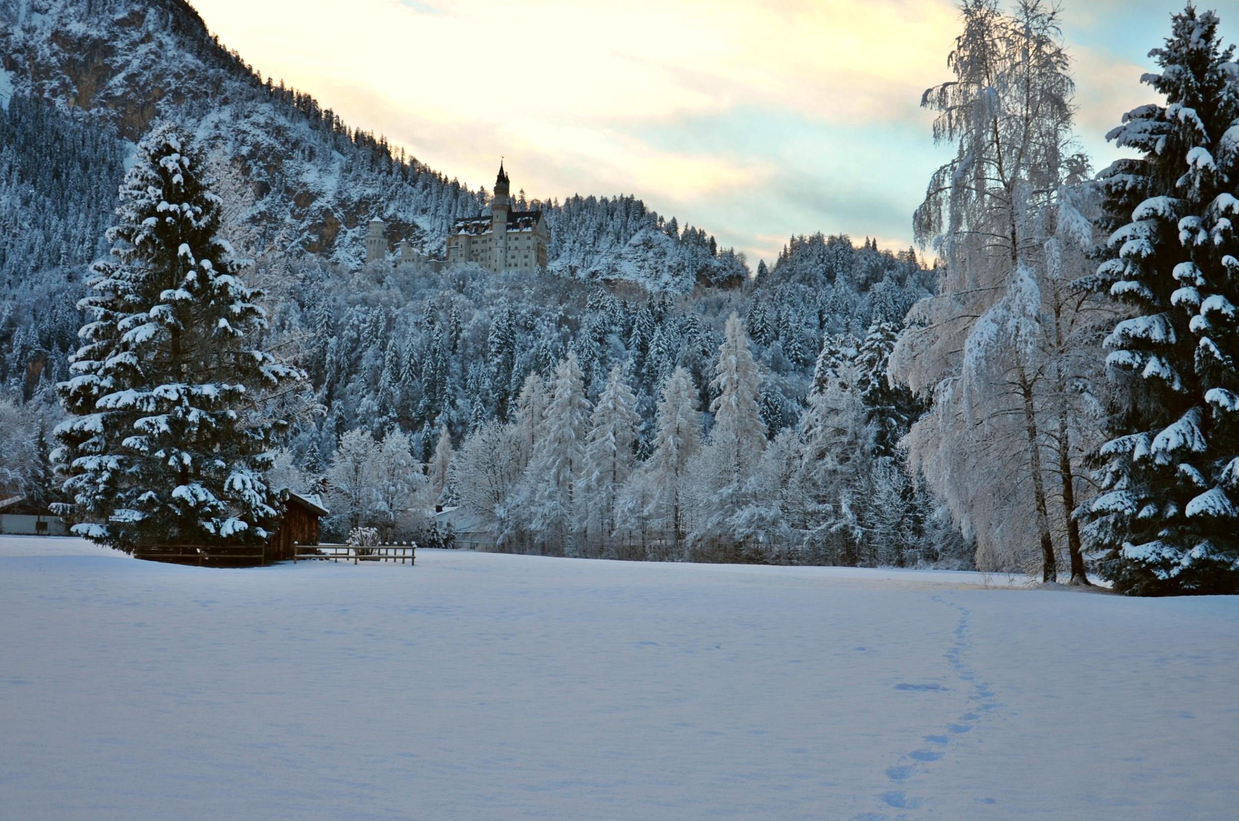 W0092 Frostmorgen Winterzauber am Schloss.jpg