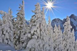 W0368 Winterwunderland auf dem Breitenberg.jpg