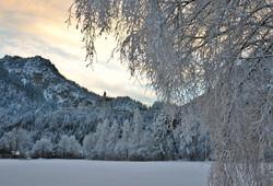 B0040 Frostmorgen am Schloss.jpg