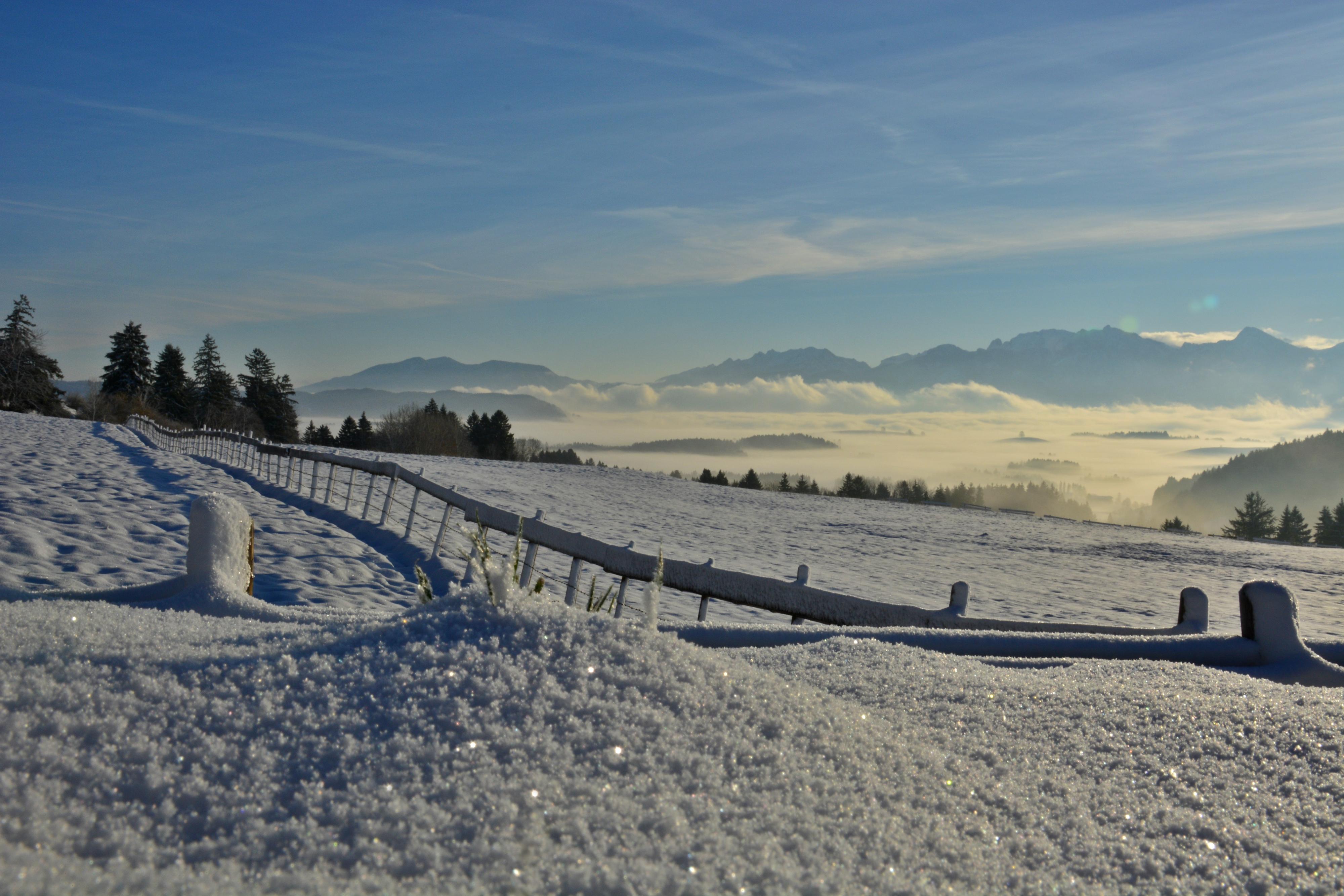 W0341 Schneekristalle Nebelmorgen Eisenberg.jpg